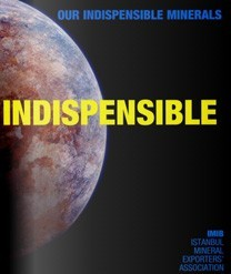 INDISPENSIBLE
